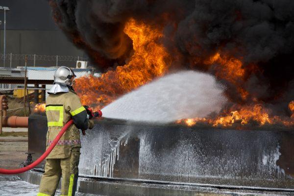 bioversal-fire-228542D1E-8B83-0F69-9252-0648EC171366.jpg